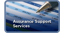 Assurance Support Services